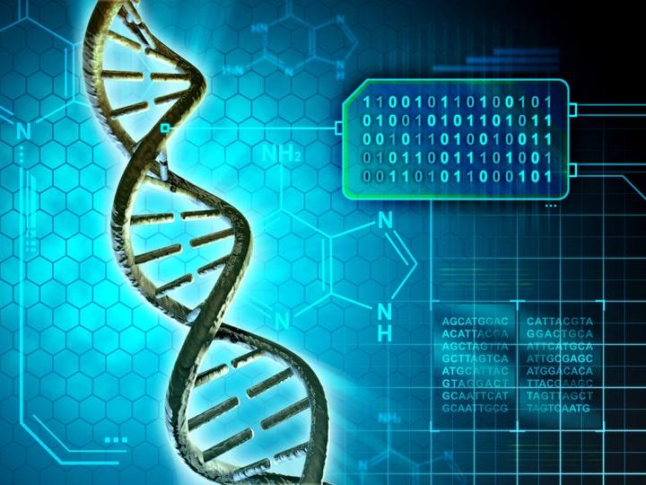 Фото: Генетические причины бесплодия